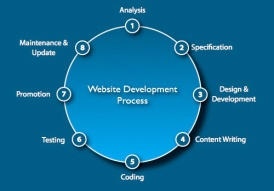 website_development_process